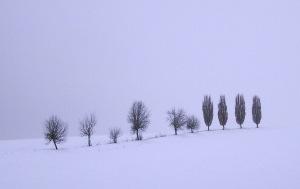 Schneelandschaft by Dorothea Schönfeld alias Facettenauge